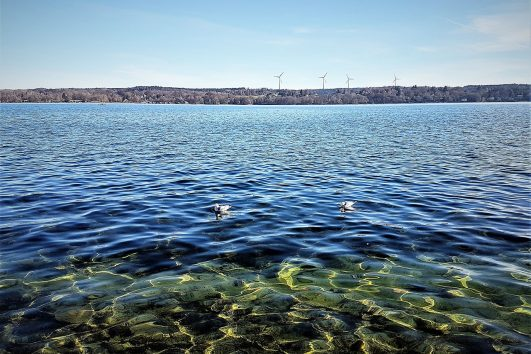 Starnberger-Lake